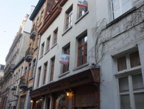 Appartement gelegen op de 2de verdieping van een klein gebouw in een autovrije straat in het hartje van Brussel. Het appartement bestaat uit een leefr