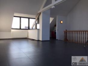 Dit leuk duplex appartement gelegen in het centrum van Meise bestaat uit een inkomhal met een trap naar de twee slaapkamers en een badkamer met douche