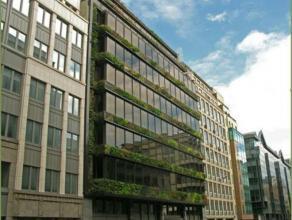 Prachtig groen gebouw in de Europese wijk, net buiten het pentagon van Brussel. Het gebouw is recent gerenoveerd. Er is een mooie inkomhal en mooie ka