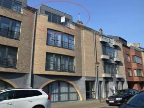RUIM DUPLEX APPARTEMENT MET 3 SLK EN TERRAS + 2 STAANPLAATSEN<br /> <br /> Ben je op zoek naar instapklaar, ruim en licht appartement vlakbij het cent