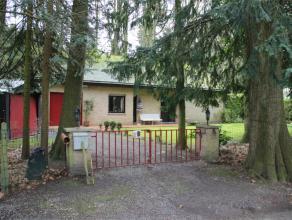 In een mooi bosgebied bieden wij een gezellige villa aan op een groot terrein grond. (2000m2) In de vrijstaande woning is alles gelijkvloer: inkom + h