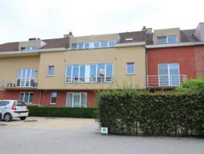 Ce très bel appartement duplex est situé sur le premier et le deuxième étage de limmeuble, à droite dans le Centre
