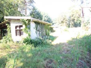 Te koop te renoveren laagbouw villa in de bossen van Rijmenam op een prachtig perceel grond.EPC: 768kWh/m²jaarGelegen in een zeer rustige buurt m