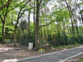Prachtig gelegen bouwperceel in de gunstige cluster van Essen-Wildert, op ca.1.200m²! Gelegen achteraan een doodlopende straat en vlakbij de coll
