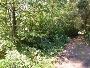 Zeer rustig en groen gelegen perceel grond van 2.310m², gelegen in de erkende weekendzone van Essen-Wildert. - Zuid-west georiënteerde tuin