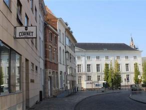 Prachtige burgerwoning met expressie ruimte in het hartje van Mechelen! Deze prachtig gerenoveerde woning wordt gekenmerkt door ruimte en licht. U kom