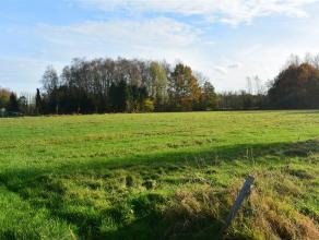 1,7 Hectare landbouwgrond niet verpacht en vrij van gebruik. Bereikbaar langs wegenis in Legebaan naast nr 53. <br />