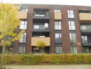 Instapklaar en nieuw appartement met o.a. 1 ruime slaapkamer, overdekt terras, lift, garage en kelderberging. EPC = 80. Uitstekend gelegen. Voor verde