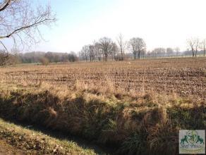 Mooi perceel landbouwgrond (5.475m²) gelegen in groene en landelijke omgeving. Meerdere mogelijkheden. Goed bereikbaar via weg. Voor meer informa