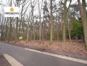 Zeer ruime perceel bouwgrond in de goedgekeurde weekendzone van Essen - Wildert.Dit perceel is gelegen aan de verharde weg en heeft een straat breedte
