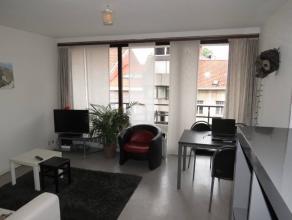 Lichtrijke, gezellig appartement met o.a. 1 slaapkamer en een lang terras (dat aansluit bij de living en de slaapkamer).<br /> Met een oppervlakte van