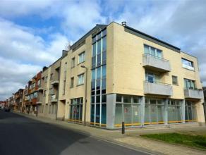 Ruim nieuwbouwappartement met twee slaapkamers (80m²) en 2 terrassen. Ondergrondse autostaanplaats en kelderberging inbegrepen. Het appartement b