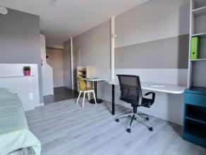 Kot-Kamer te huur in 5000 Namur