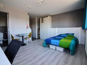 Studio DOUBLE moderne, neuf de 2016, meublé d'env.32 m², composé de : séjour, cuisine équipée (2 taques cuisso