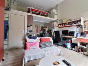 Studio double d'environ 22 m² + 8 m² en mezzanine,, moderne, meublé, situé au rdc côté Cour paysagère. S&e