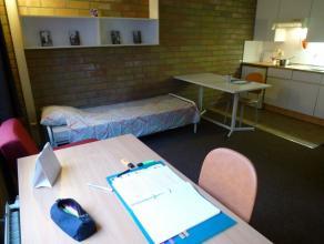 Studio spacieux meublé d'environ 28m² situé à l'étage 3/4 côté rue. Séjour avec tapis plain, cuis