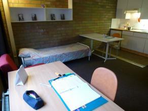 Studio spacieux meublé d'environ 28m² situé à l'étage 1/4 côté rue. Séjour avec tapis plain, cuis
