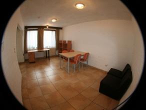 Appartement 1 chambre vintage meublé d'environ 45m² situé au rdc côté rue. Séjour en carrelage, cuisine &eacute