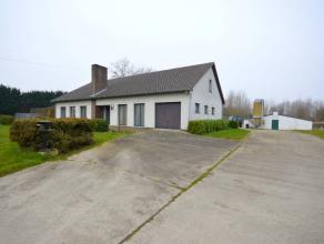 Deze gelijkvloerse woning is rustig gelegen doch dichtbij het centrum van Alken en op 2 minuten van de Expresweg richting Sint-Truiden en Hasselt. Dez