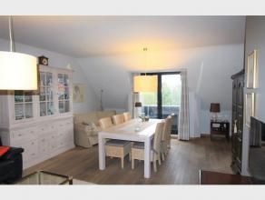 Ruim APPARTEMENT met 2 slaapkamers, terras en ondergrondse staanplaats te huur in het centrum van Diest, Michel Theysstraat 29. Dit leuk dakappartemen