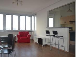 Mooi, gemeubeld appartement op de achtste verdieping met een uniek zicht over Brussel. Ruime, lichtrijke living met open  ingerichte keuken met aanslu