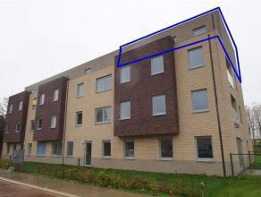 in optie - Dak appartement - Tienen euro 705 /maand