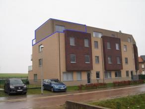 Te huur - Appartement - Tienen euro 520 /maand