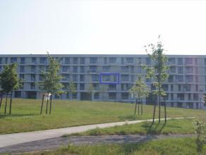 Te huur - Appartement - Tienen euro 700 /maand