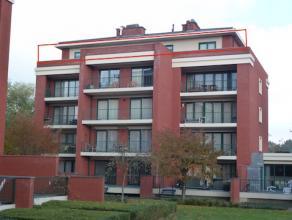 Smaakvol ingericht penthouse, rustig gelegen in het groen en op wandelafstand van het Kolonel Dusartplein. De grote ring is vlot bereikbaar. <br /> In
