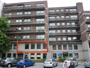 Ruim appartement, ideaal gelegen aan de binnenzijde van de groene boulevard met een aangenaam uitzicht op het Leopoldplein, met bomen en veel groen. V