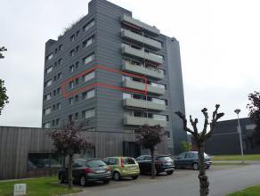 """Aangenaam appartement, rustig en residentieel gelegen op het """"Hollands Veld"""", op wandelafstand van het stadscentrum.<br /> De oprit E313 is vlot berei"""