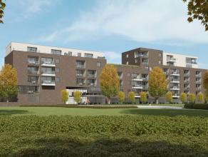 Kantoorruimte te huur (230,86 m² + 230,86 m²) op niveau 0 en 1 -  meer informatie op kantoor.