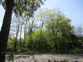 Bokrijk Mooi perceel bouwgrond - Hasseltweg links van huisnummer 439 - 64 are - Z-ligging - ongeveer 35m straatbreedte