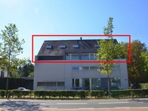 Mooi afgewerkte kantoorruimte van 220m2 gelegen op de 2de en 3de verdieping. <br /> Incl. 6 parkeerplaatsen en kelderberging. <br /> <br /> Uitstekend