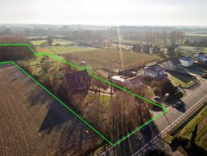 """Meer info: 012/23.49.04 of http://www.machon.be/nl/te-koop/woning/alken-3570/3485/ en klik op """"GRONDPLAN"""" voor EXTRA PLANNEN, FOTO'S EN 3D-SIMULATIES."""