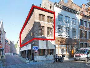 Dit instapklaar triplex-appartement ligt in een zeer knap historisch hoekpand (1620) in het hartje van Maaseik. Het pand werd gerenoveerd met de nodig
