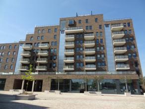 Mooi, gezellig appartement met 2 slaapkamers op een boogscheut van het centrum en van het station van Sint-Truiden. Wonen op de Kleine Markt in Sint-T