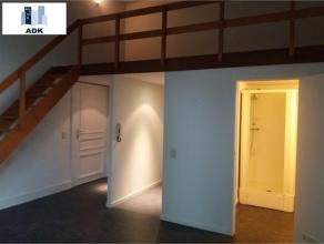 Studio (proche de la gare des GUILLEMINS) au 1er étage de +/- 40m² sur tapis plain avec une spacieuse mezzanine, séjour, placard, c