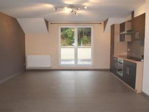 Appartement (3ème étage) en excellent état se composant: living (32m²) avec cuisine donnant sur une terrasse, 1 chambre (12m