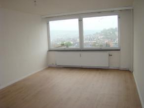 Bel appartement deux chambres situé au centre de Verviers à louer. Composition: cave privative, hall d'entrée, 2 chambres, salle