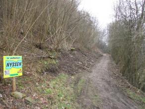 au lieu dit Heid de Vesdre : ensemble de parcelles boises de 5,69 ha constitues pour 1/3 de feuillus, 1/3 de pins et 1/3 dpicas. Accs depuis la route