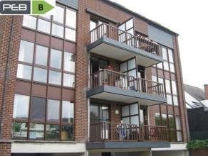 Splendide appartement rénové dans une petite résidence, beau quartier.  Composition: hall, cuisine équipée, 2 chamb