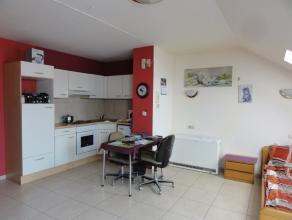 Recent gerenoveerde studio met hoek ingerichte keuken en badkamer (douche en wc). Electrische verwarming (accumulator)