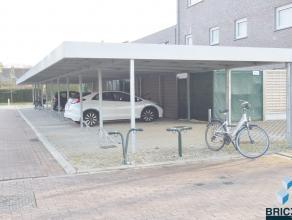 In het nieuwbouwcomplex Molenwiekstraat-Oost zijn diverse carports (beveiligd met beugel) beschikbaar, de plaatsen bieden voldoende manoeuvreerruimte