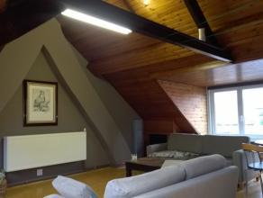 Het appartement omvat een inkom, ruime woonkamer met eetplaats, keuken (voorzien van kookplaat, dampkap, spoelbak & koelkast), slaapkamer, badkame