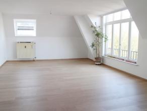 Prachtig appartement met zicht op het begijnhof. Dit appartement werd volledig gerenoveerd. Zéér ruim appartement met grote lichtrijke l