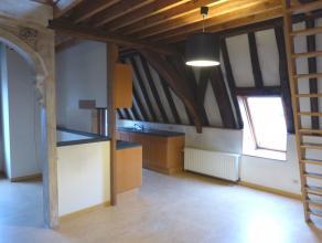 Dit duplex appartement is gelegen in een historisch pand aan de rand van het Patershol in Gent. Het dakterras biedt uitzicht op het Gravensteen en de