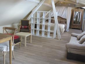 Deze luxueus afgewerkte en gemeubelde mini-loft is gelegen in het centrum van Brugge, vlakbij de vesten, de ring, openbaar vervoer en diverse winkels.
