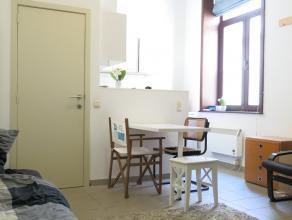 Comfortabele studentenkamer met eigen keuken en badkamer op het gelijksvloers pal in het hartje van Brugge, vlakbij de markt en het AstridparkBestaand