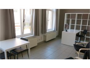 Deze ruime gemeubelde studentenkamer met eigen keuken en badkamer staat garant voor een aangename en memorabele studenten- of stagetijd in Brugge. Rus